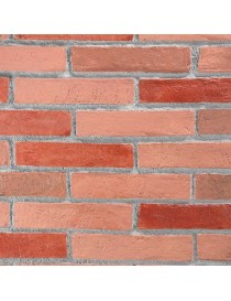 PINK PANELS Brick COATING